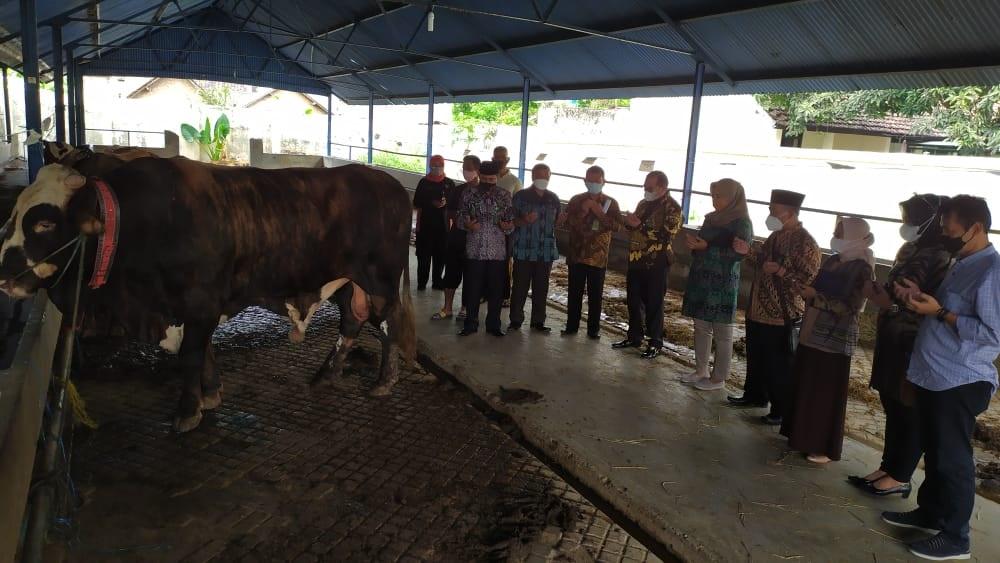 Penyembelihan Hewan Qurban di Pengadilan Negeri Surakarta